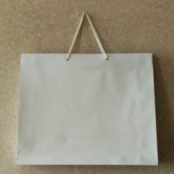 Подарочный пакет ламинированный