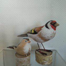Птичка щегол с подружкой
