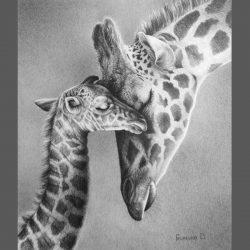 """Картина. Графика. """"Жирафы"""" Из серии """"Нежность"""""""